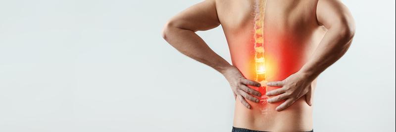 Rückenschmerzen – warum es zwickt